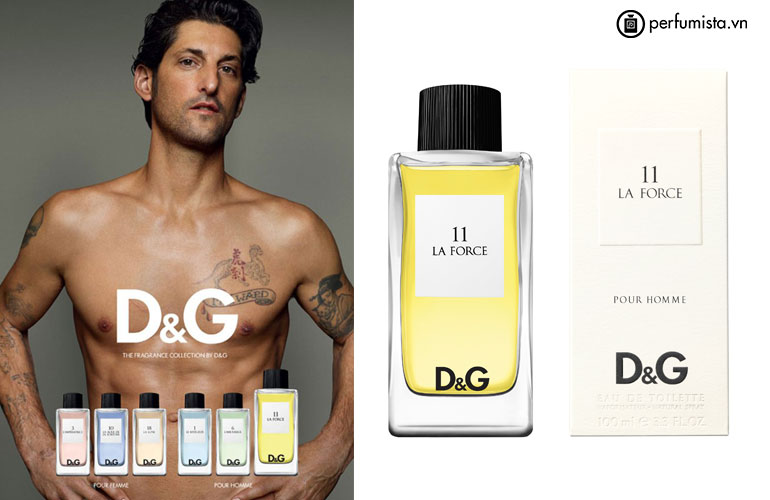 D&G Anthology La Force 11