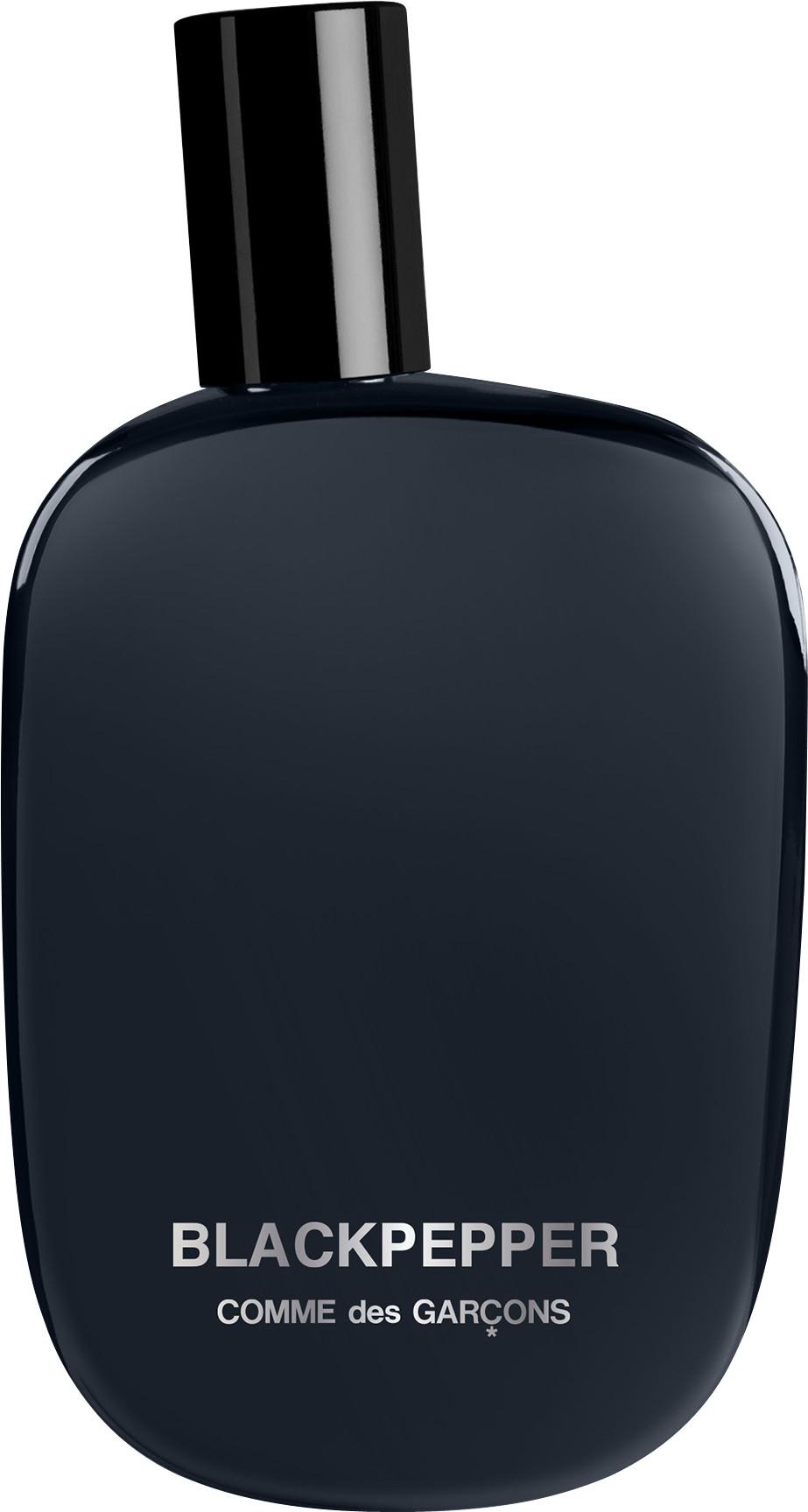 Парфюмированная вода Comme des Garcons Blackpepper для мужчин и женщин  - edp 100 ml tester